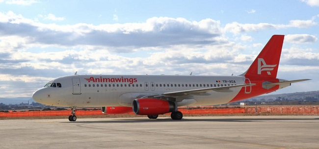 Animawings lansează curse spre oraşe din Spania, Italia, Danemarca sau Finlanda