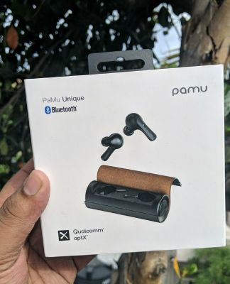 Pamu Unique earphones