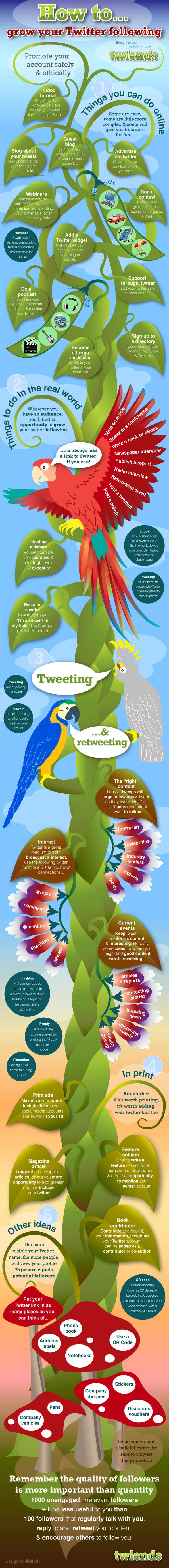 Infographic Twiiter Followers The Trent