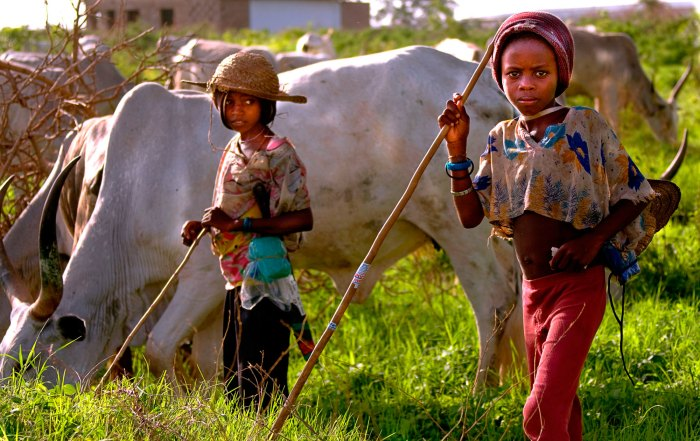 Fulani Children