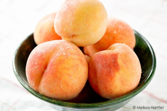 Peaches The Trent