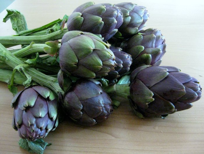 Artichokes The Trent