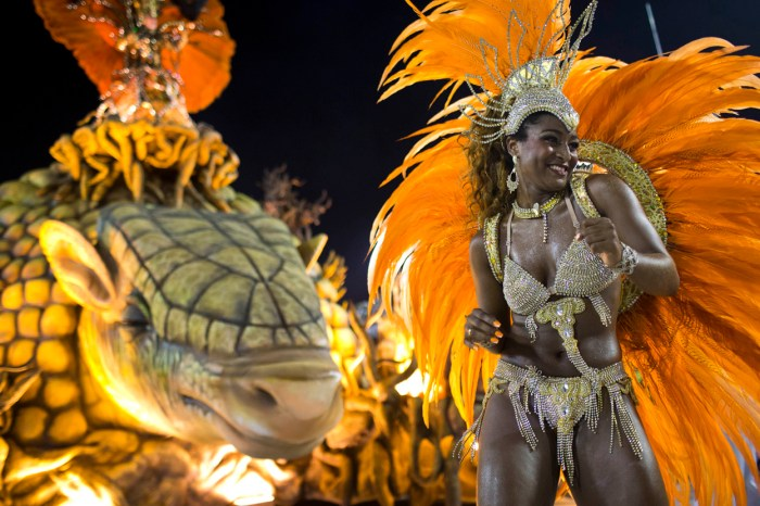 A performer from the Unidos de Vila Isabel samba school during Carnival in Rio, on February 12, 2013. (AP Photo/Felipe Dana)