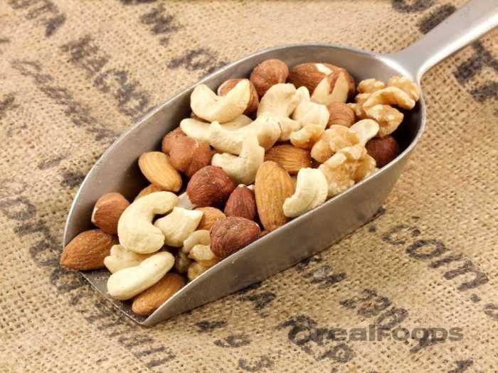 nuts the trent 33
