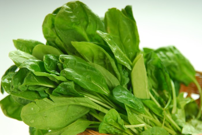spinach the trent
