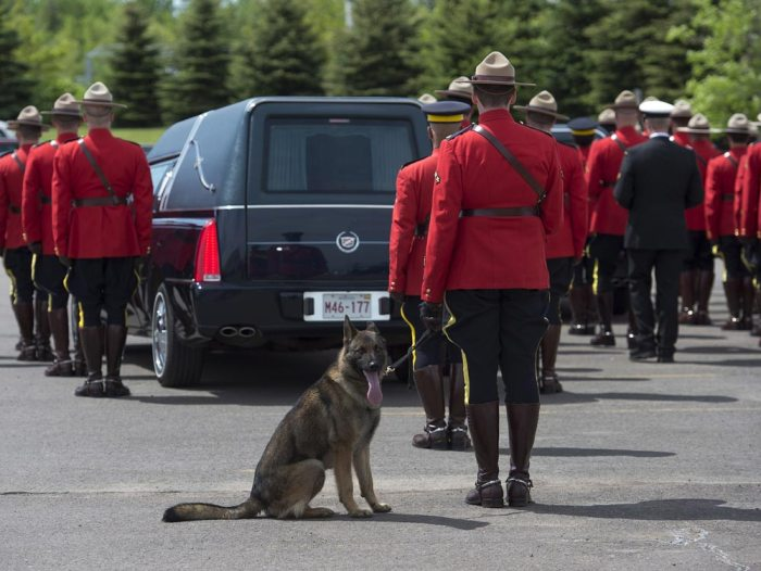 Ross was killed in Moncton last week, along with fellow officer Douglas Larche and Fabrice Gevaudan. All Canadians, and Danny, mourn them today. (Photo Credit: The Canadian Press/Andrew Vaughan)