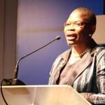 Oby Ezekwesili, Tunde Bakare, Tony Rapu