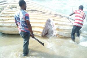 Residents chopping the strange creature on the shore of Eleko beach. (Photo Credit: Naij.com)