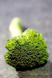 broccoli_gl_10nov10_rex_b_426x639