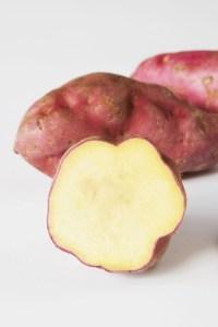 sweet_potato_gl_10nov10_rex_b_426x639