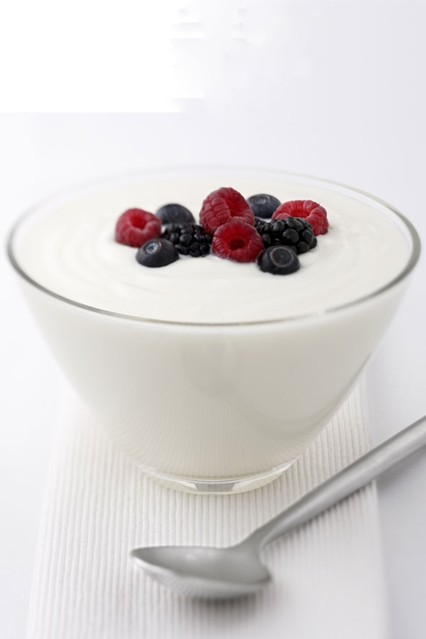 yogurt_gl_10nov10_rex_b_426x639