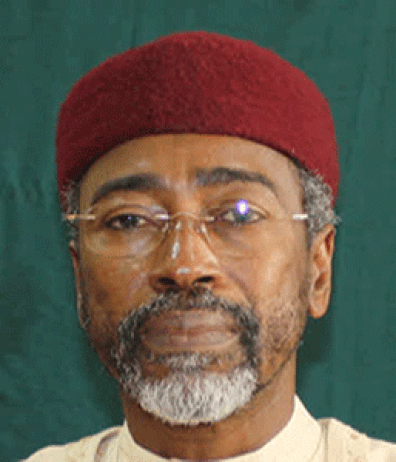 Ambassador Ahmed Wali,  was on Tuesday, June 30, 2015 appointed the acting chairman of the Independednt National Electoral Commission, INEC. (Photo Credit: Vanguard)