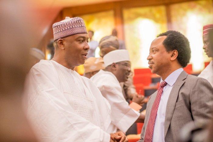 Senate, Nigeria, Senators, Shehu Sani