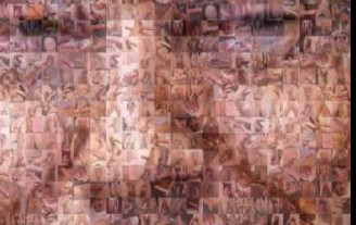 Donald Trump's collage created with over 500 penis photos | Tumblr/homopower