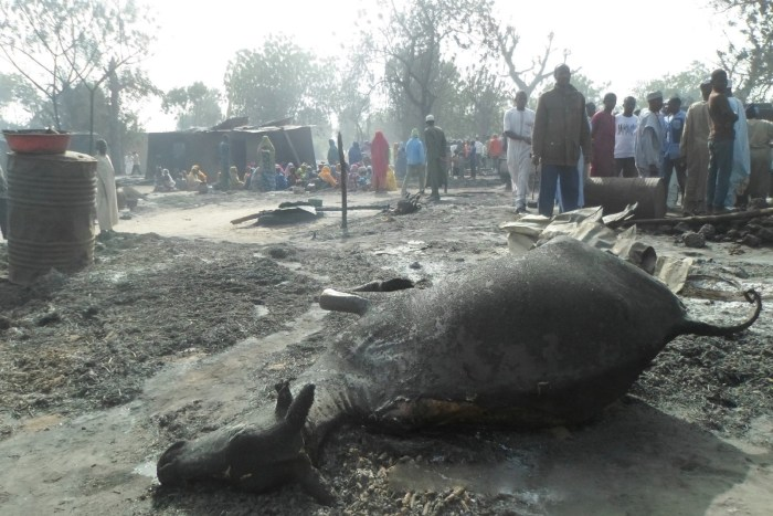 People gather around a dead animal and burnt out houses following an attack by Boko Haram in Dalori village 5 kilometers (3 miles) from Maiduguri, Nigeria , Sunday Jan. 31, 2016.   AP/Jossy Ola