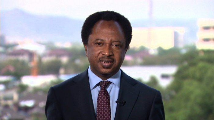 Senator Shehu Sani FUlani