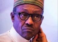 Indigenous Buhari President Nigeria Boko Haram