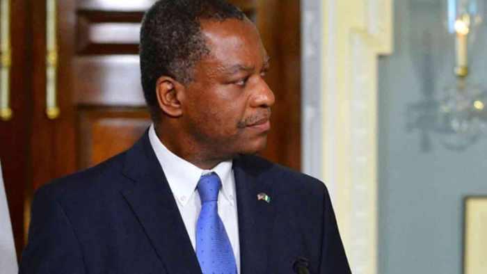 Nigerians, South Africa, Killings, Geoffrey Onyeama,