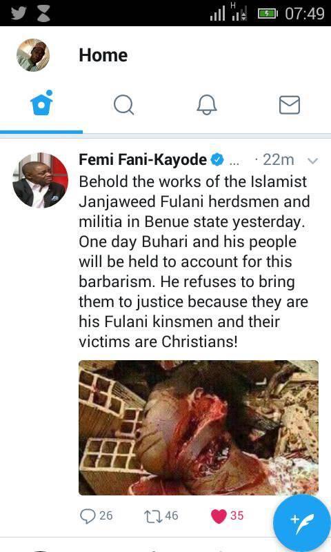 Fulani Herdsmen Femi Fani Kayode