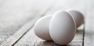 Teenage, Akmal, Indonesia, Eggs