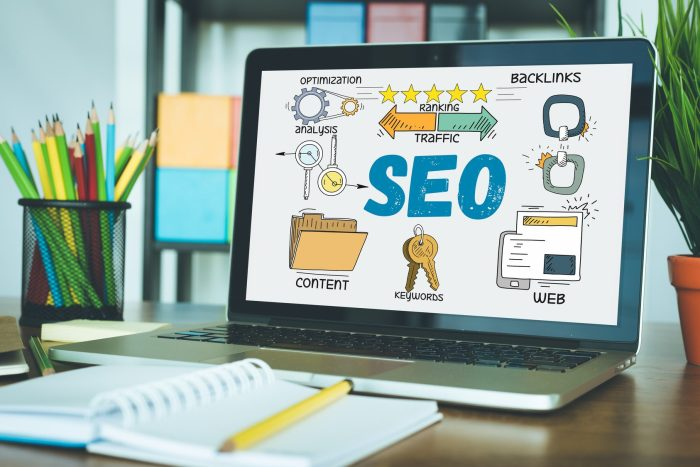 Professional SEO Service website