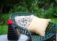 mosquito trap protect