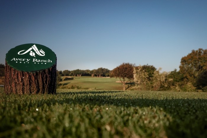 VIP's Golf Packages For The Avid Golfer