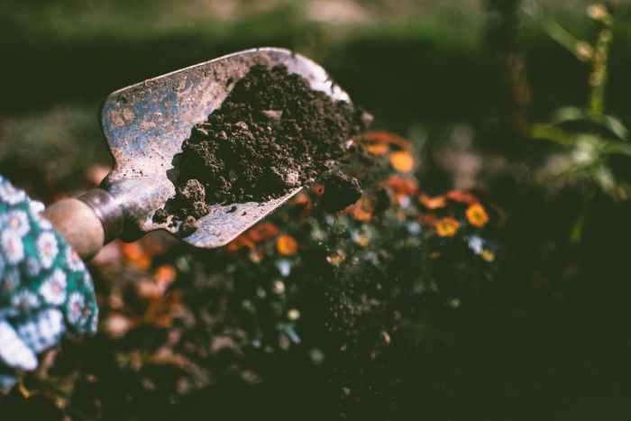 garden gardening tools
