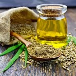 Cannabis cooking oil