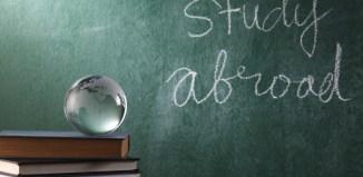 glass globe on the book nursing