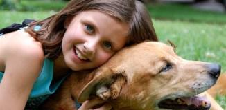 girl pet kids pets child children cat dog