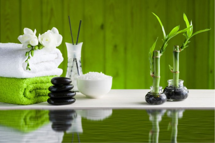 Feng-Shui-What-it-is-its-Five-Elements-and-Basic-Strategies-for-Modern-Interiors