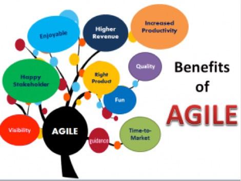 agile knowledge