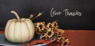thanksgiving thank you thankfulness gratitude daily encourager hand-226358_1280