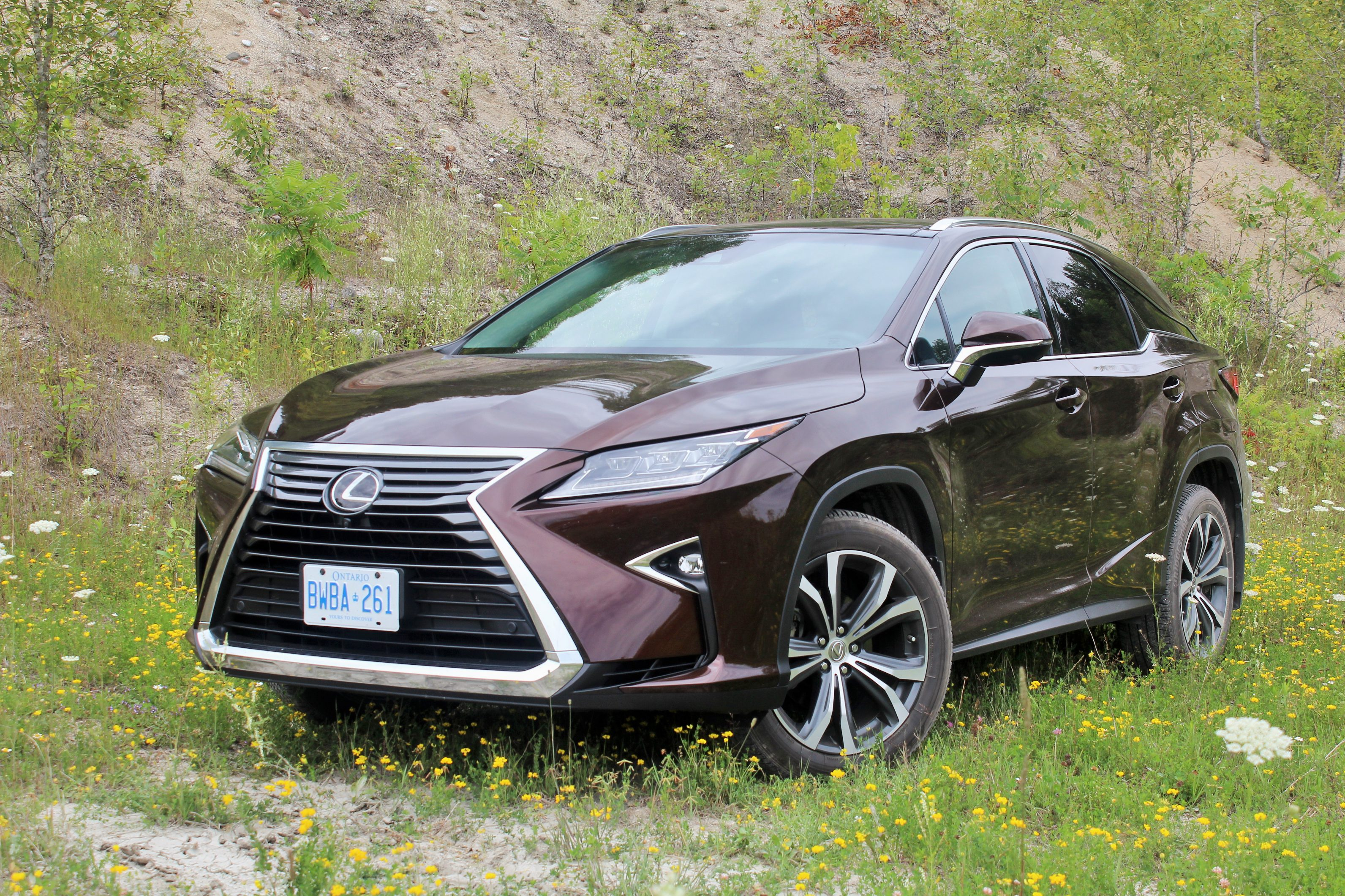 2016 lexus rx 350 awd review tradition in disguise the truth about cars