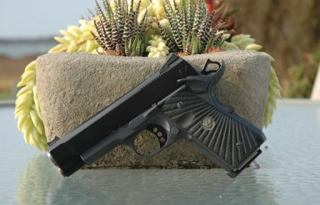 Wilson Combat Bill WIlson Carry - succulent (courtesy The Truth About Guns)