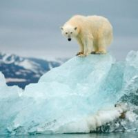 "Climate change science implodes as IPCC climate models found to be ""totally wrong"""