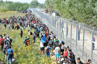 Migrants on the Hungarian-Croatian border. Click to enlarge