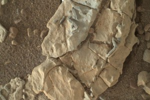 Alleged trace fossils found on Mars