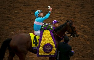 Breeders' Cup Photo © Lady Eli after winning the 2014 Breeders' Cup Juvenile Fillies