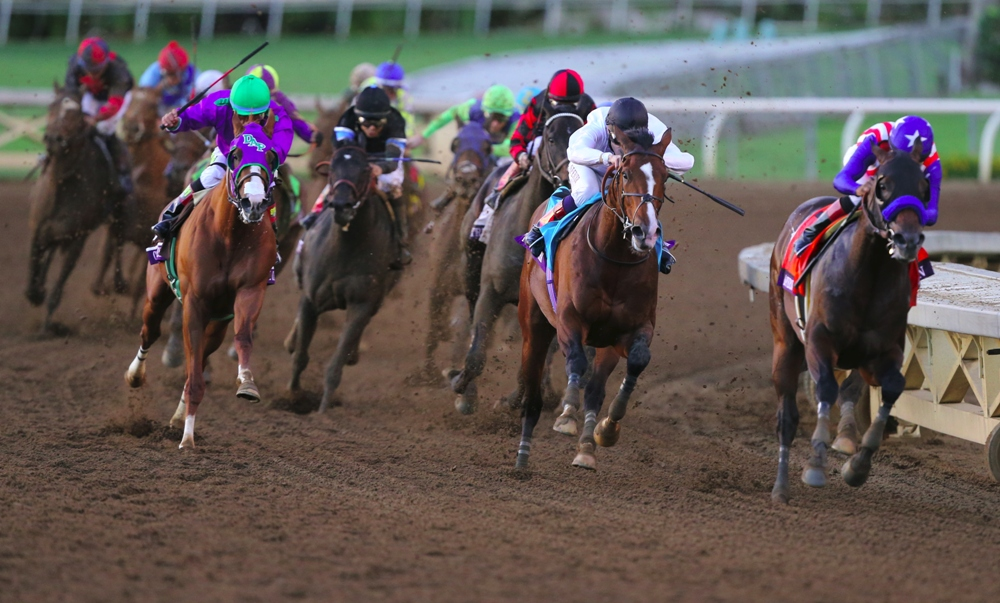Keeler Johnson's Breeders' Cup Classic Rankings: 10-2-15