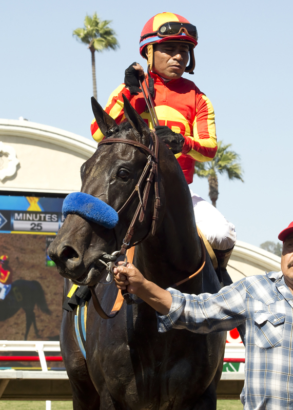 Gimme Da Lute and jockey Martin Garcia are guided into the winner's circle after their victory in the 0,000 El Cajon Stakes, Saturday, August 29, 2015 at Del Mar Thoroughbred Club, Del Mar CA. © BENOIT PHOTO