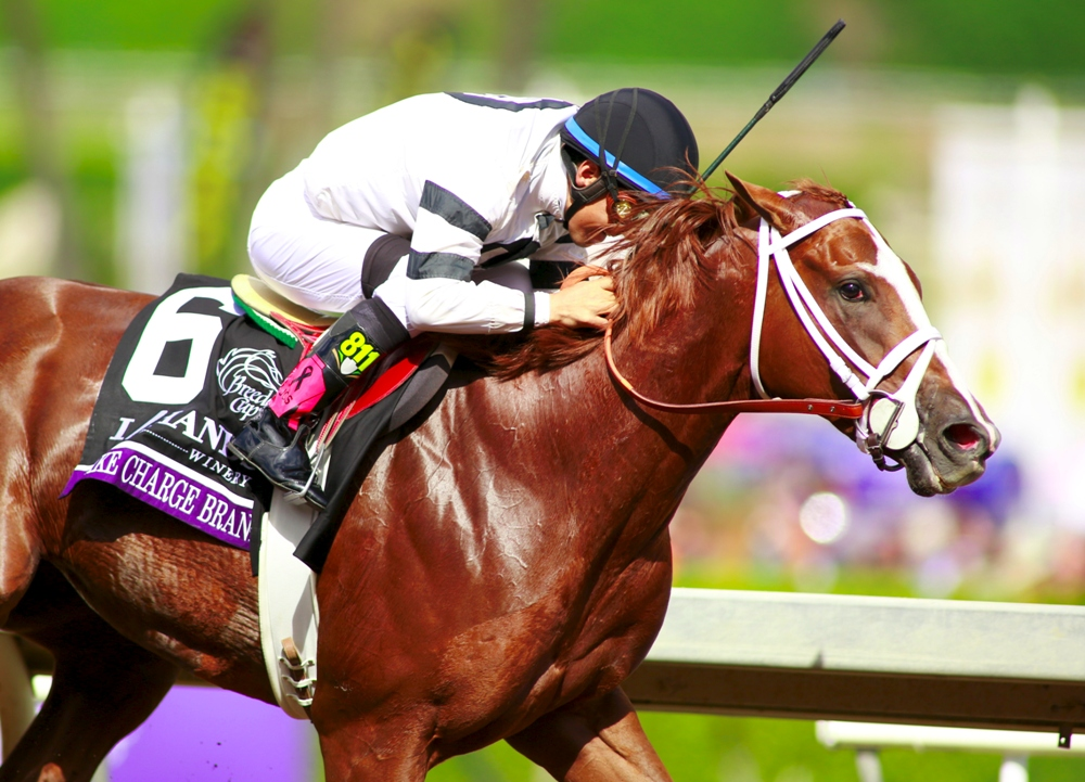 Daily Replay: The 2014 Breeders' Cup Juvenile Fillies