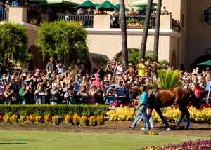 Triple Crown champ American Pharoah made a very special guest appearance between races on September 6th at Del Mar ©Benoit Photo