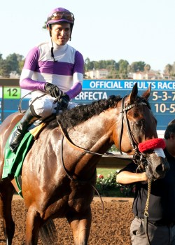 Reddam Racing's Nyquist and jockey Mario Gutierrez return to the winner's circle after their victory in the Grade I, $300,000 Del Mar Futurity, Monday, September 7, 2015 at Del Mar Thoroughbred Club, Del Mar CA. © BENOIT PHOTO