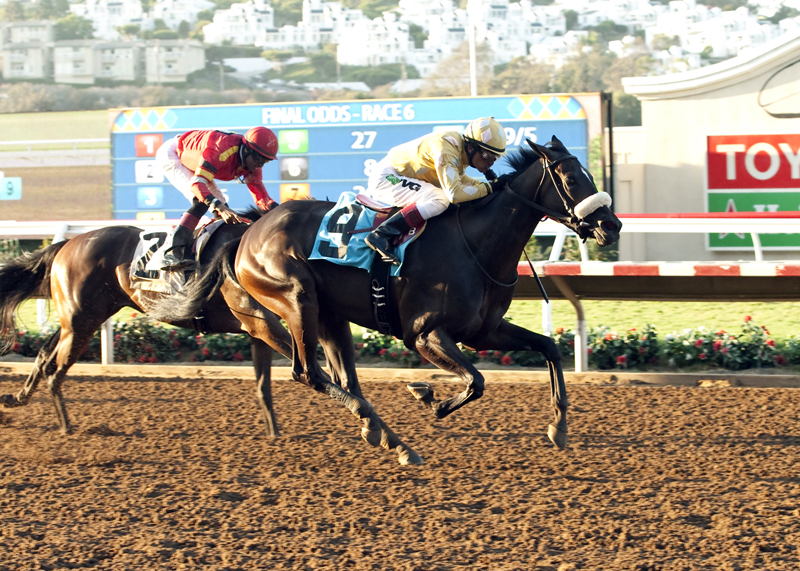 Patriotic Diamond winning the 0,000 Generous Portion Stakes at Del Mar ©Benoit Photo