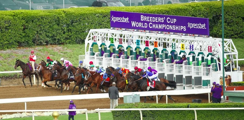 The start of the 2014 Breeders' Cup Sprint (gr. I) at Santa Anita - Breeders' Cup Photo (c)