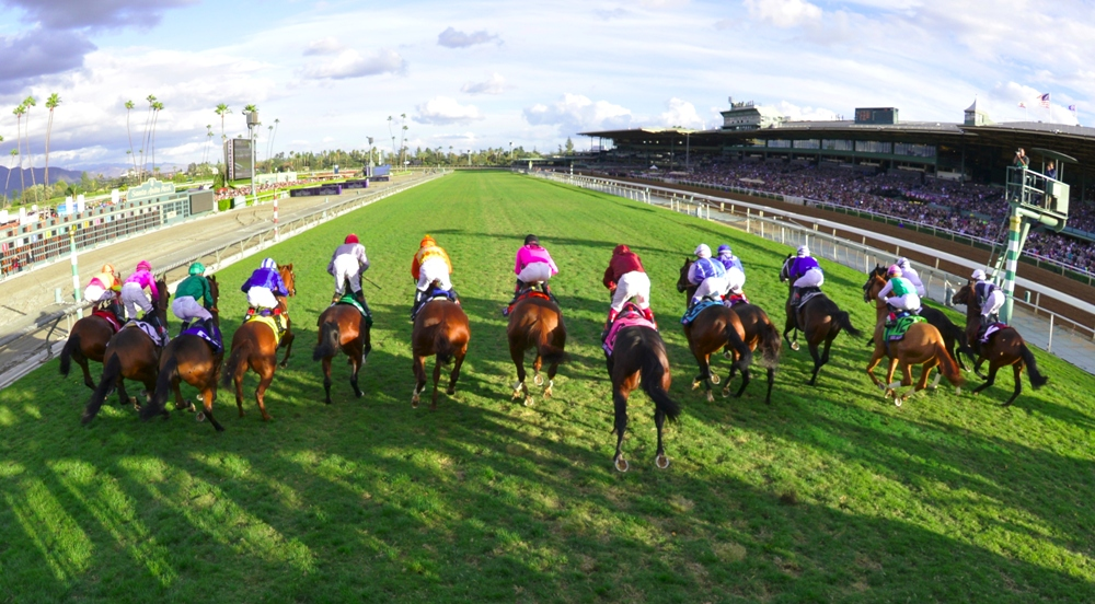 Breeders Cup Pre Entries Announcement Will Be Streamed