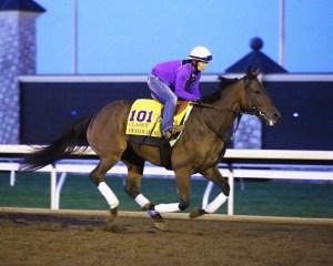 Beholder gallops at Keeneland on October 22nd - Keeneland Photo
