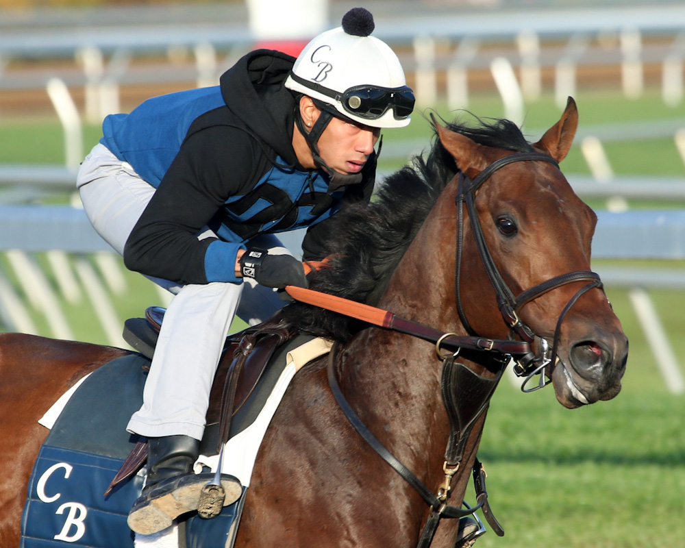 Bobby's Kitten - Morning Workout - Keeneland Race Course - 10231